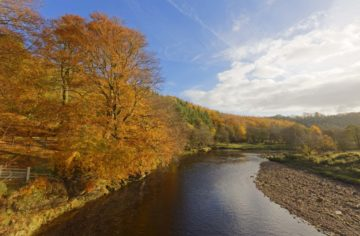 ST750 RIVER SOUTH TYNE, SOUTH TYNEDALE, NORTHUMNBERLAND